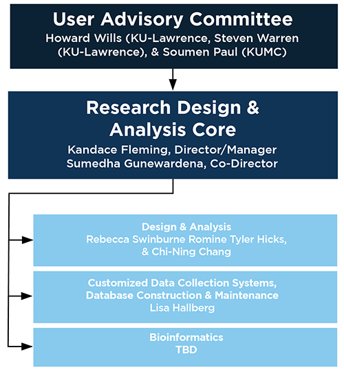 Organizational chart of the Research Design and Analysis Core